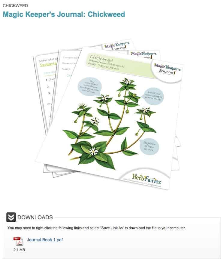 herb fairies journals