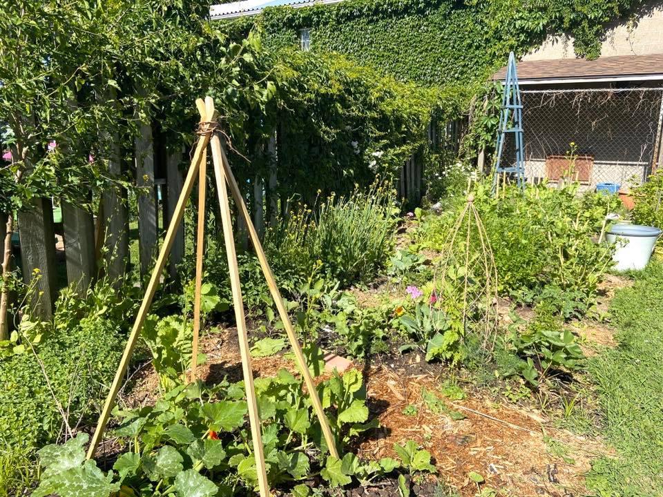 Imie's Garden