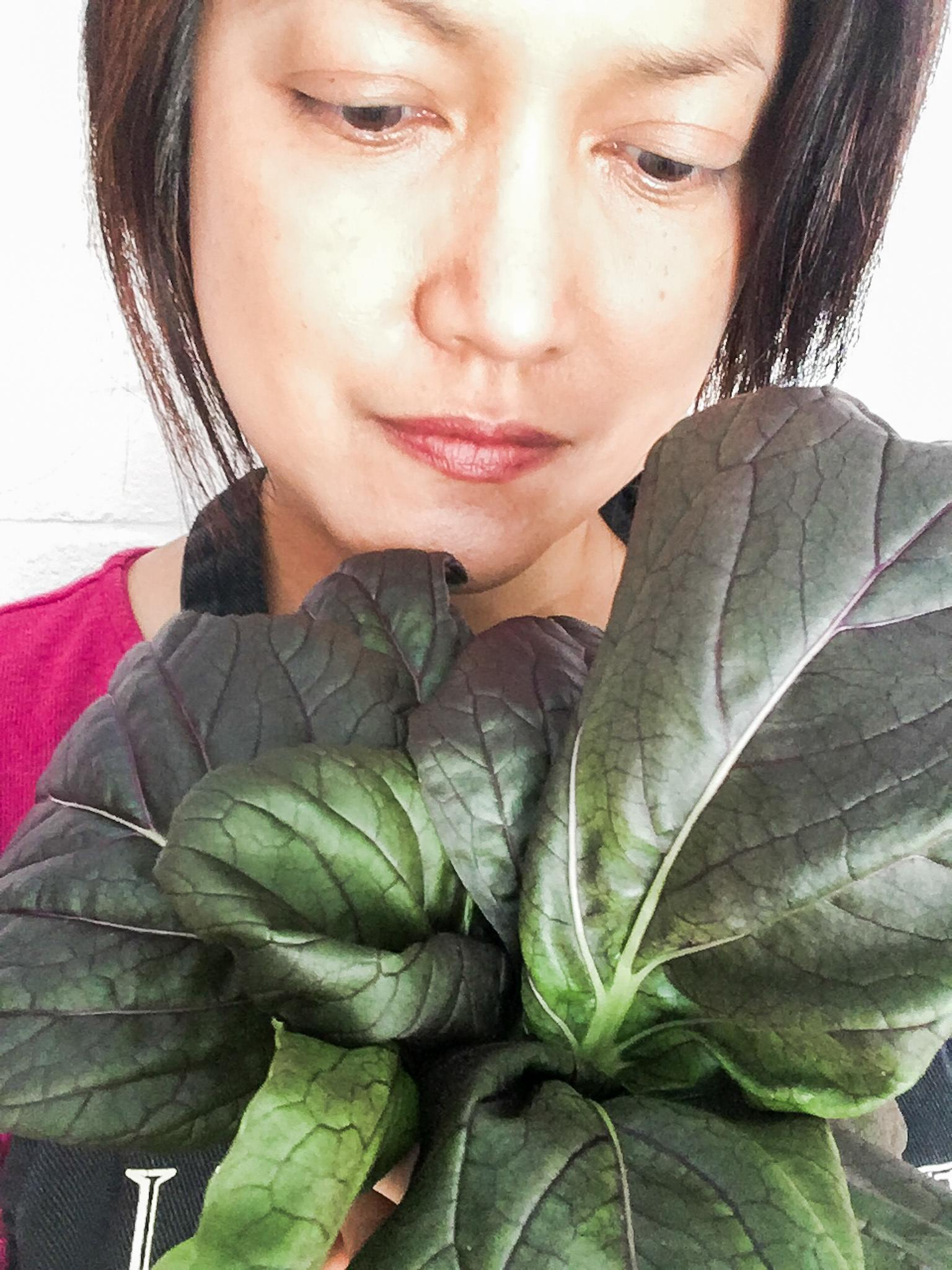 Tower Garden - Purple Bok Choy