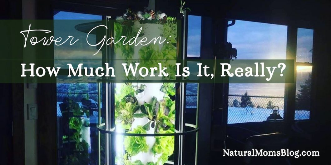 Tower Garden Maintenance