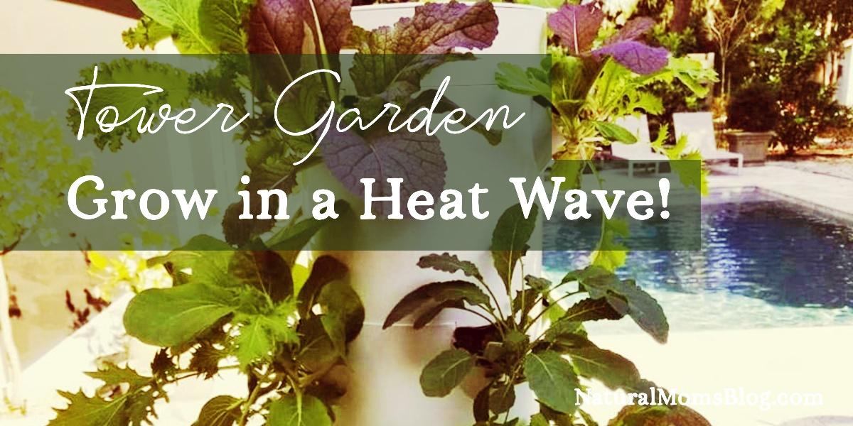 Tower Garden in a Heat Wave